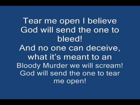 Sum 41-Screaming Bloody Murder(karaoke-with lyrics on screen)