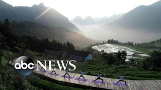 World in Photos, June 20: Mountainside yoga, World Cup soccer goal, cuckoo chicks