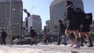 大雪の 東京 関東甲信越  平成25年 by picua. thumbnail