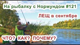 ЛЕЩ в сентябре. ЧТО? КАК? ПОЧЕМУ? / На рыбалку с Нормундом #121