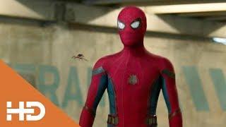 Человек-паук Допрашивает Аарона Дэвиса ► «Человек паук: Возвращение домой» (2017) Лучшие Моменты