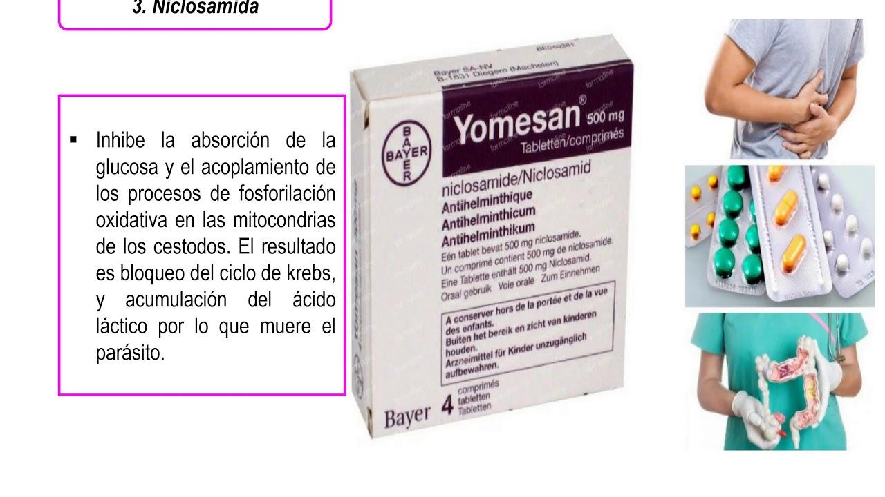 antihelmintikus gyógyszer prazicid