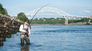 Cape Cod Canal Survival Guide   Striper Season Update Ep. 18