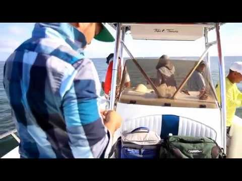 Tommy Fishing Show  HDMCC Houston North Jetty 9-06-2015 Full HD