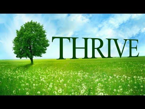 Thrive (Prosperar) - O Que Será Necessário? (Legendado)
