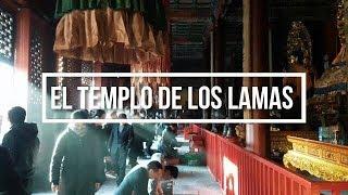 El Templo de los Lamas • Beijing • China
