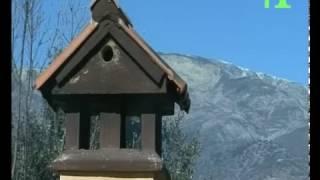 Casas Rurales los Chozos de Tejea