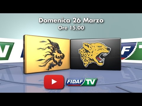 Lions-Giaguari: 29-21 (highlights)