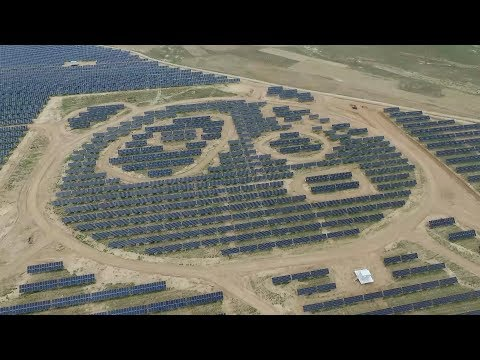 China's panda-shaped solar plant begins trial operation