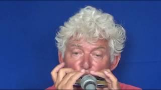 Tims Tiny Tunes #300   BOSSA, Level 1, Harmonica play-along lessons   Jazz harmonica licks (lr)
