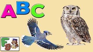 Fairy alphabet /  ABC songs/ birds, part 1 /  Nursery Rhymes / cartoon for kids, children/FS