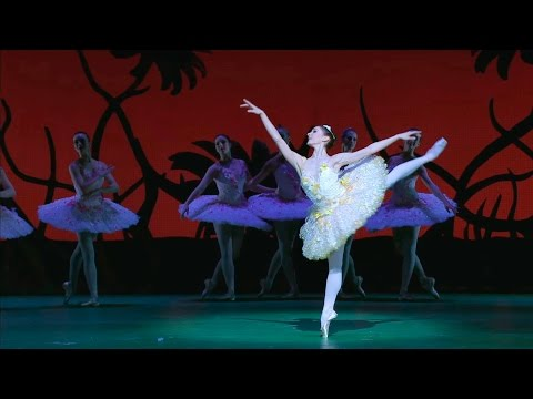 Don Quixote – The Queen of the Dryads, Act II (The Royal Ballet)