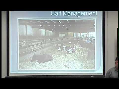 World Dairy Expo 2013 - Drumgoon Dairy