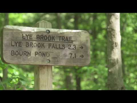 Lye Brook Falls Trail - Summer 2017 Visitors Guide to Southern VT