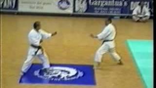 sensei Takeshi Oishi and sensei Mitsuo Inoue - VII World Championship ITKF - 1994.avi