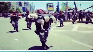 Policial leva cão nos braços no desfile da Independência em Fortaleza