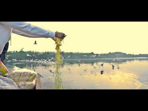 Weekend Getaway -2    Coldplay & Chainsmokers , Something just like this   IIT Delhi