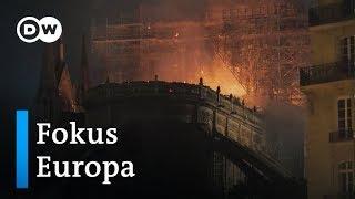 Frankreich: Notre-Dame nach dem Feuer | Fokus Europa