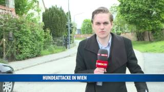 Brutale Hundeattacke auf Baby in Wien