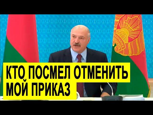 Разгневанный Лукашенко РАЗНОСИТ кабинет министров!