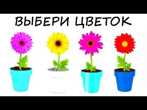 Тест ЦВЕТОВАЯ ДИАГНОСТИКА! Выбери самое приятное сочетание цветов! Психологический тест онлайн!