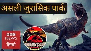 Have you seen real Jurassic Park? (BBC Hindi)