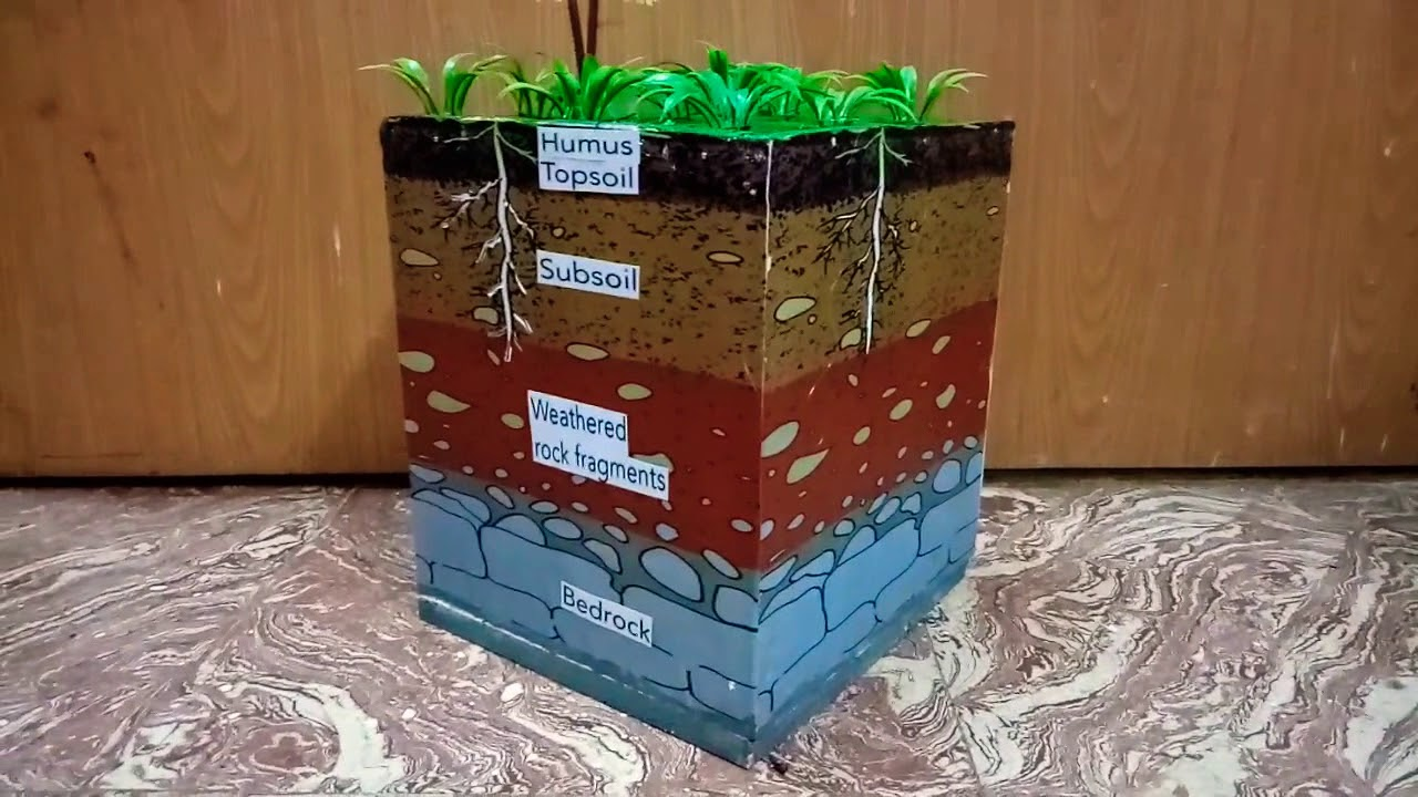 school project layer of soil model www schoolprojectcenter in  [ 1280 x 720 Pixel ]