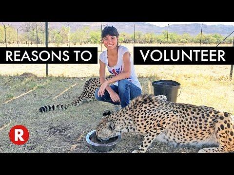 The Power Of Volunteering // Top 5 Reasons To Volunteer Today