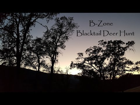 Blacktail Deer Hunt, B-ZONE