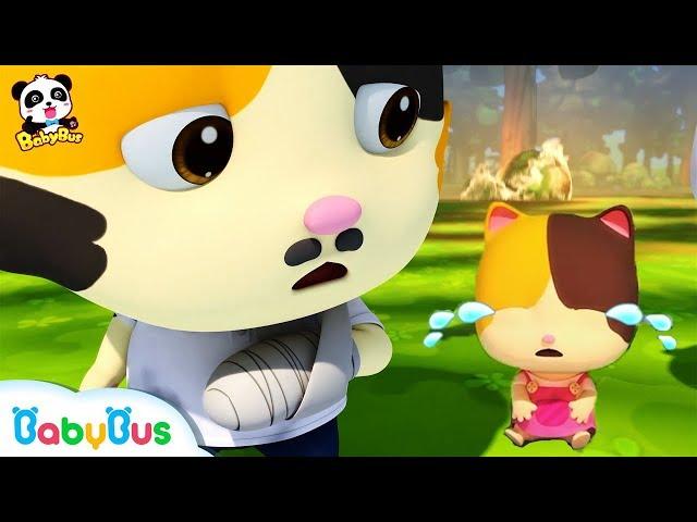 Baby Kitten's Daddy Got Injured in Forest Fire | Super Panda Rescue Team | Monster Truck | BabyBus