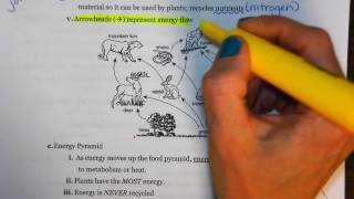 Regents Review: Ecology