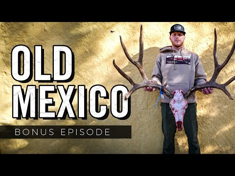 2 MEXICAN BUCKS HIT THE GROUND - BONUS EPISODE