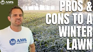 Pros & Cons Of Winter Lawn Overseeding In Phoenix