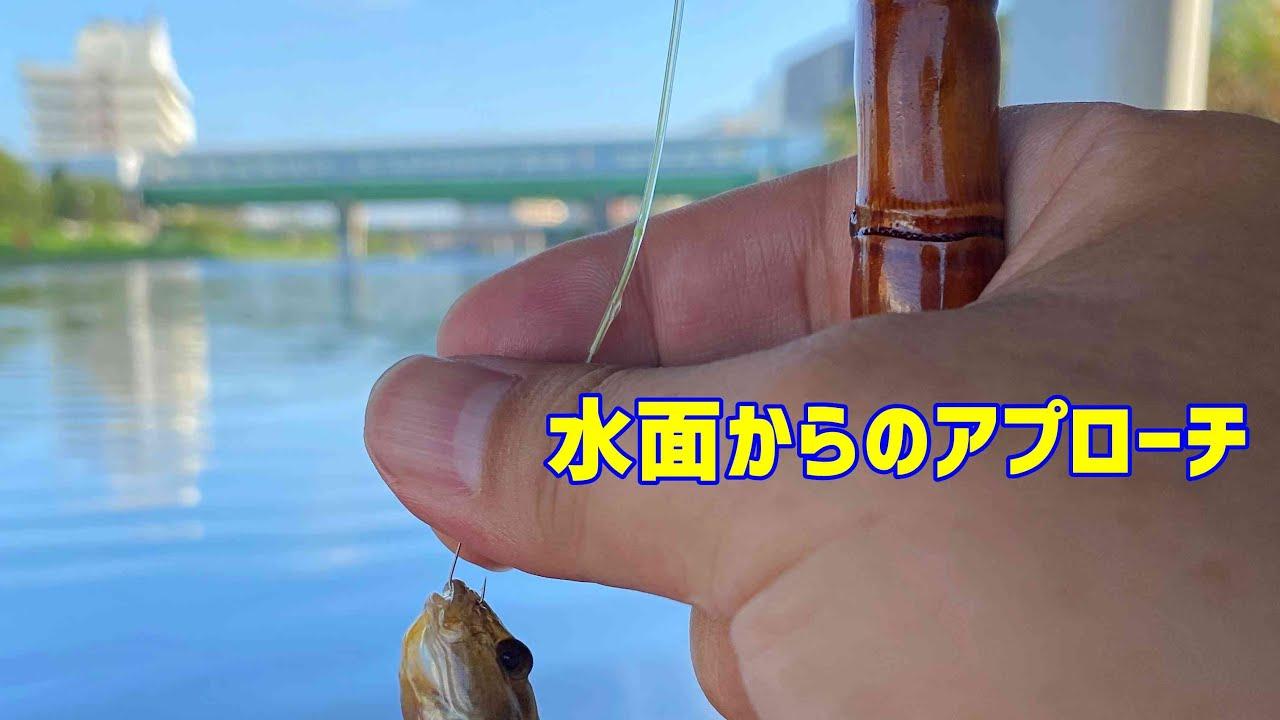 【新企画】フローターでハゼ釣り体験してみたら虜になっちゃうかもしれません