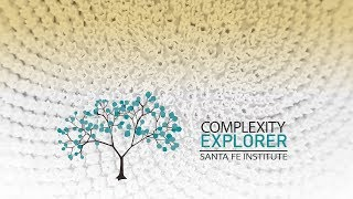 2019 How to Use Complexity Explorer