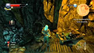 The Witcher 3: Out of the Frying Pan, Into the Fire - Treasure Hunt