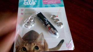 Marika Life|обзор на лазер для кошки|😺
