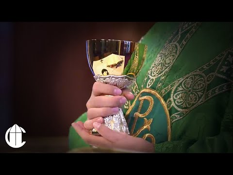Catholic Mass: 9/25/20   Friday of the Twenty-Fifth Week in Ordinary Time
