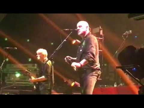 The stranglers. 29.3.18. Newcastle o2 academy. golden brown