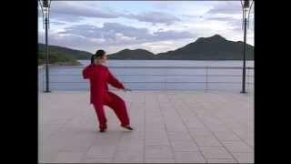 Wu Style 9 Form Tai Chi Chuan