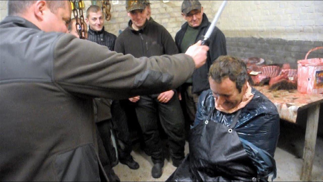 Chasse battue et traque au sanglier bapt me du sanglier - Cuisiner du sanglier au four ...