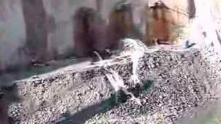 Infinity Tower , Dubai video by Imre Solt , 7 Sept 2007