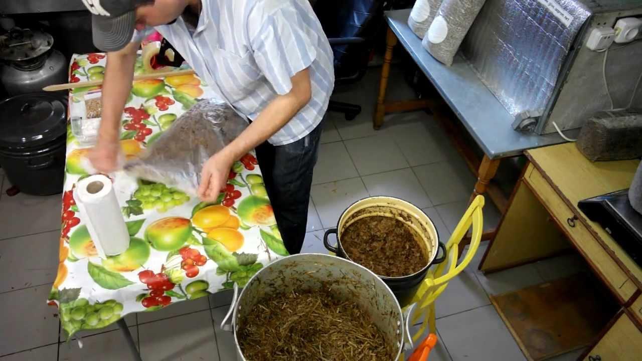 feae6be0f Moderné prístupy k pestovanie húb doma