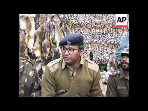 INDIA: POLICE CLAMPDOWN ON TRADE IN ANIMAL SKINS