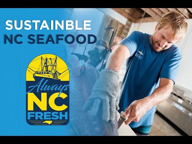 Sustainable NC Seafood