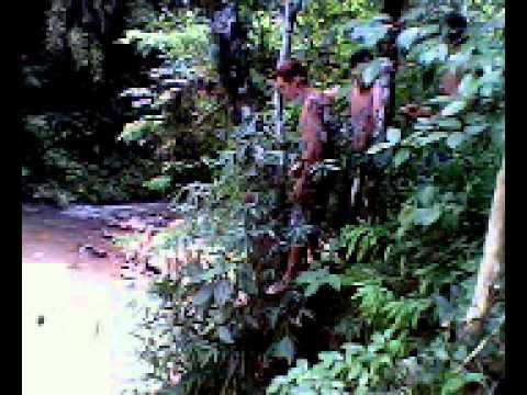 Bela Vista da Caroba Paraná fonte: i.ytimg.com
