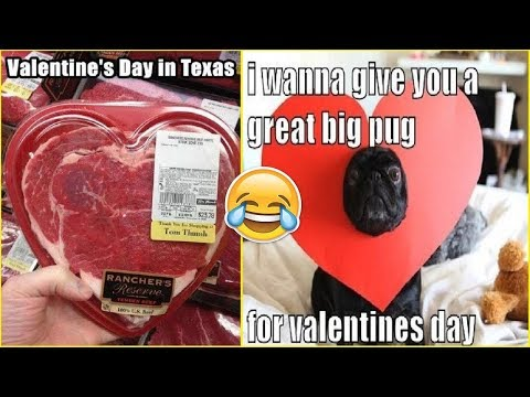 Valentine's Day Jokes And Memes That Will Make You Laugh 😂😂😂