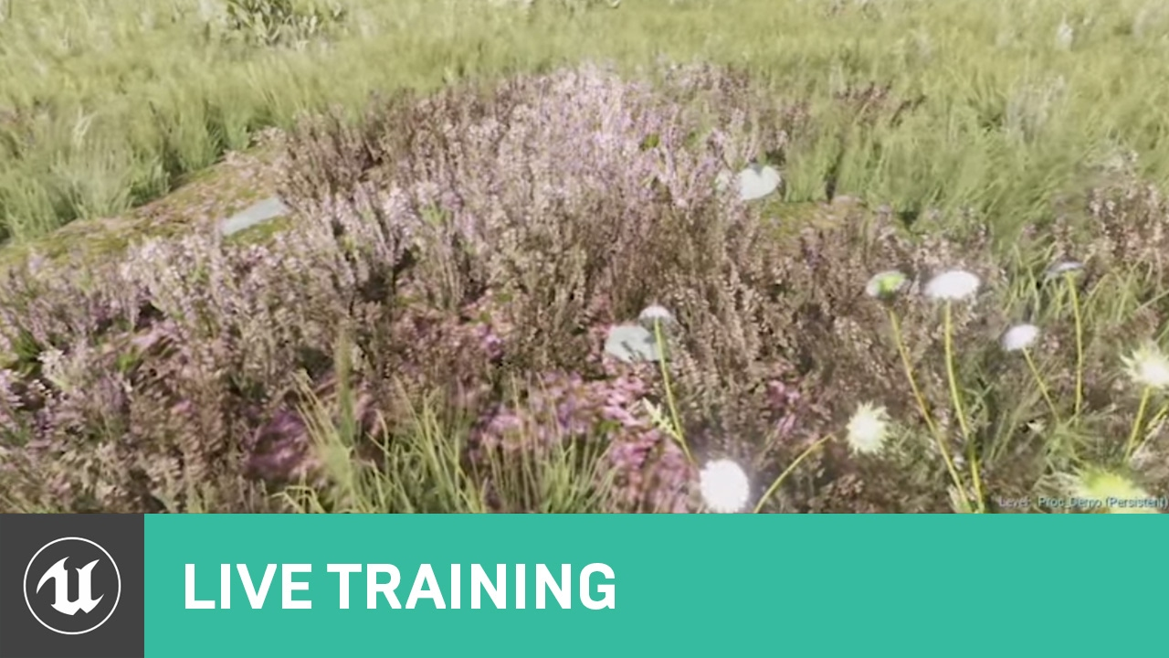 Foliage | Live Training | Unreal Engine