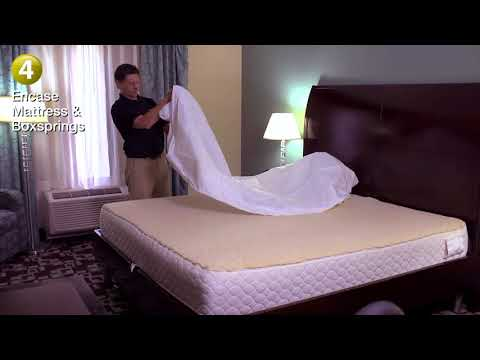 Kill Bed Bugs - Commercial Application with Harris Bed Bug Products