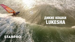Lukesha - Дикие Кошки